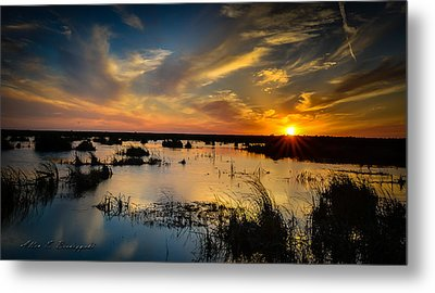 Sun  Clouds  Water And Silence Metal Print