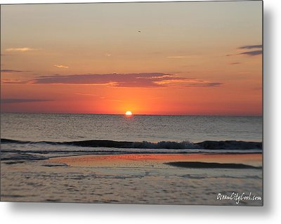 Metal Print featuring the photograph Sun Colors by Robert Banach