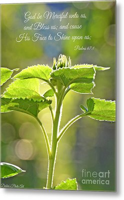 Sun Drenched Sunflower With Bible Verse Metal Print by Debbie Portwood