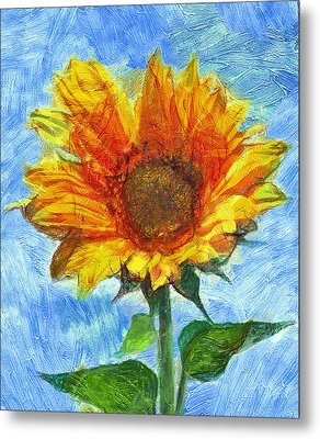 Sun Flowering 2 Metal Print by Yury Malkov