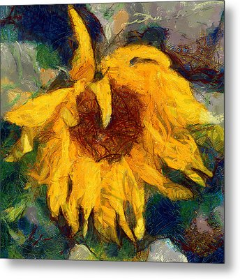 Sun Flowering 6 Metal Print by Yury Malkov