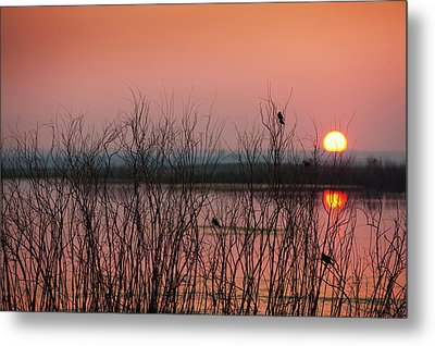 Sun Glowing In A Pink Sky At Sunset Metal Print by Greg Huszar