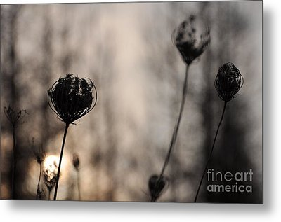 Sun In Darkness Metal Print