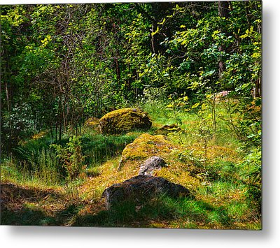 Metal Print featuring the photograph Sun In The Forest by Leif Sohlman