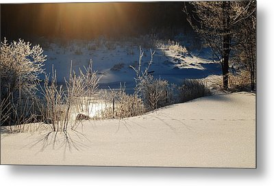 Metal Print featuring the photograph Sun On Snow by Mim White
