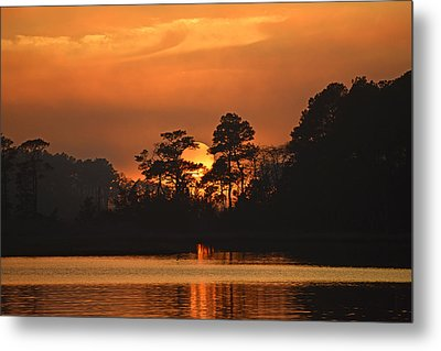 Metal Print featuring the photograph Sun Setting In Trees by Bill Swartwout