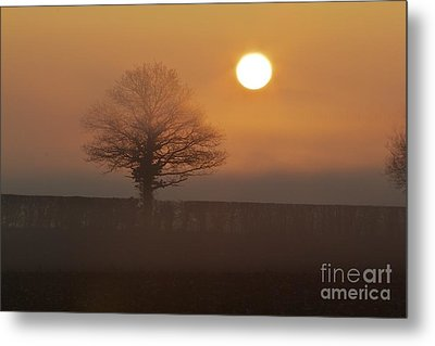 Metal Print featuring the photograph Sun Up by Gary Bridger