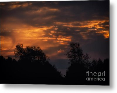 Sun Up Metal Print by Thomas Woolworth