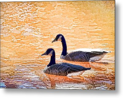 Metal Print featuring the photograph Sunday On The Pond by Ludwig Keck