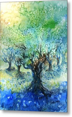 Sundrenched Olive Grove   Metal Print by Trudi Doyle