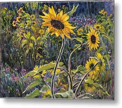 Sunfloral Metal Print by Steve Spencer