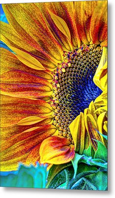 Sunflower Abstract Metal Print by Heidi Smith