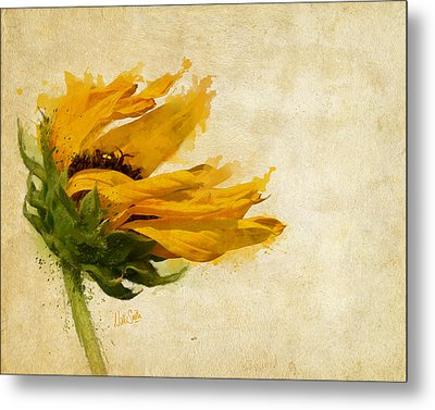 Sunflower Breezes Metal Print by Nikki Marie Smith