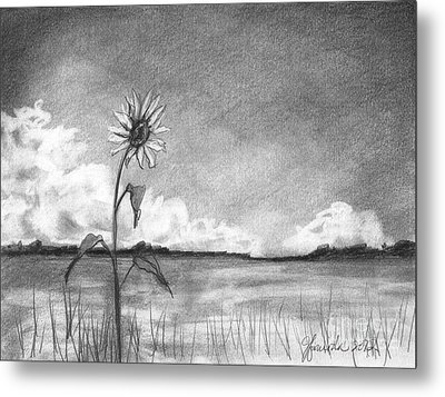 Metal Print featuring the drawing Sunflower Cloud by J Ferwerda