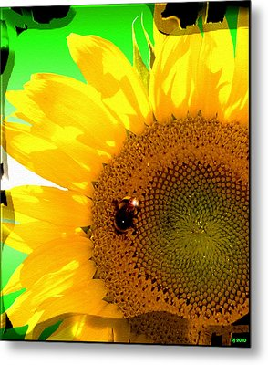 Metal Print featuring the digital art Sunflower by Daniel Janda