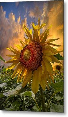 Sunflower Dawn Metal Print