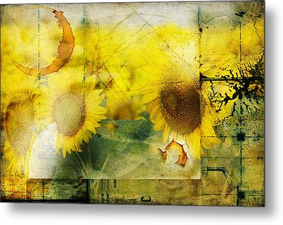 Metal Print featuring the photograph Sunflower Grunge by Kathy Churchman