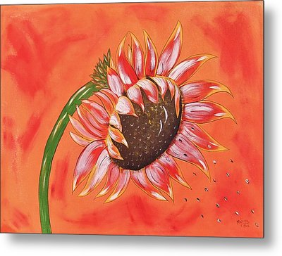 Sunflower In Fall Metal Print by Cindy Micklos