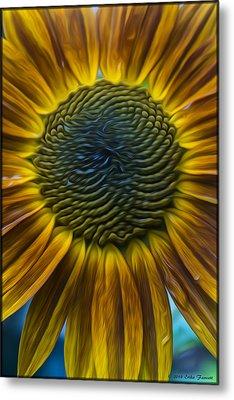 Sunflower In Rain Metal Print