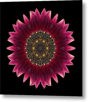 Sunflower Moulin Rouge I Flower Mandala Metal Print
