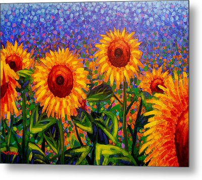 Sunflower Scape Metal Print by John  Nolan