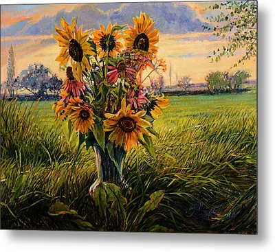 Sunflower Sunset Metal Print by Steve Spencer