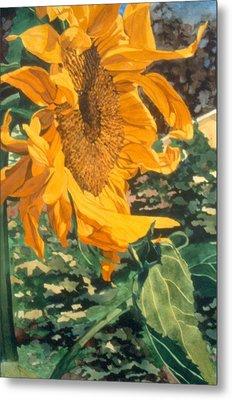 Sunflower Watercolor Painting Beautiful Flowers Sun Flower Garden Art Floral Artist K. Joann Russell Metal Print by Elizabeth Sawyer