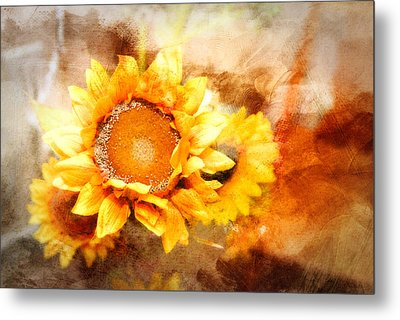 Sunflowers Aglow Metal Print by Mary Timman