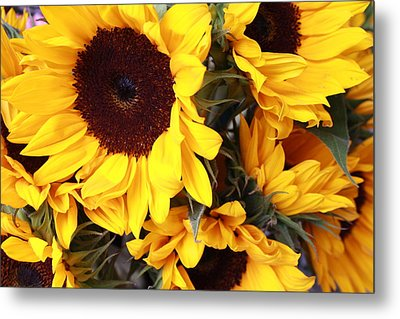 Metal Print featuring the photograph Sunflowers by Dora Sofia Caputo Photographic Art and Design