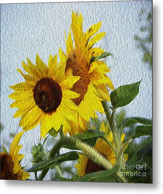 Metal Print featuring the photograph Sunflowers Of The East by Ecinja Art Works