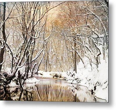 Sunkissed Winter Creek Metal Print by Jai Johnson