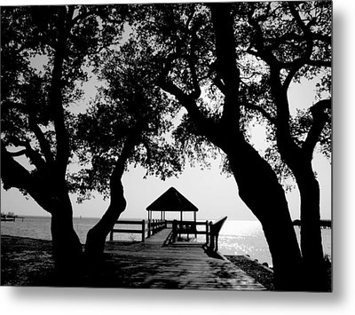 Sunlight On Currituck Sound Metal Print by Steven Ainsworth
