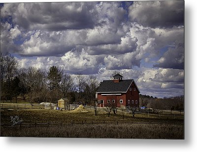 Metal Print featuring the photograph Sunlit Farm by Betty Denise