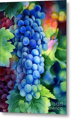 Sunlit Grapes Metal Print
