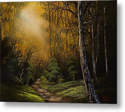 Sunlit Trail Metal Print by C Steele