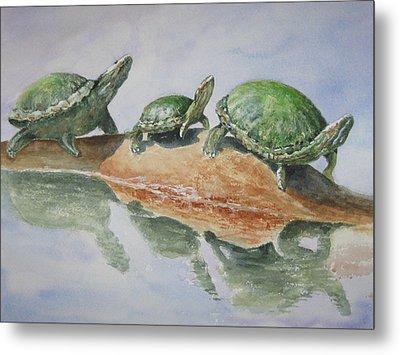 Sunning Turtles Metal Print