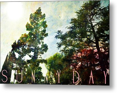 Sunny Day Metal Print by John Fish