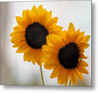 Sunny Flower On A Rainy Day Metal Print