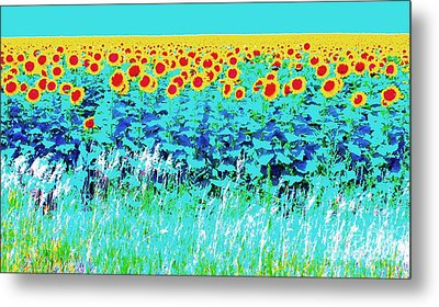 Sunny Kansas Metal Print by Ann Johndro-Collins