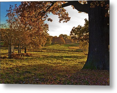 Sunny Richmond Autumn Metal Print