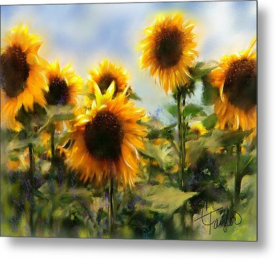 Sunny-side Up Metal Print by Colleen Taylor