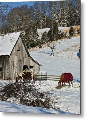 Sunny Snow Day Metal Print by Denise Romano