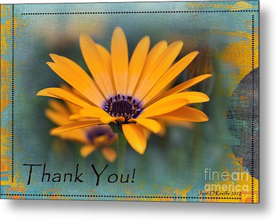 Metal Print featuring the photograph Sunny Thank You  by Jean OKeeffe Macro Abundance Art