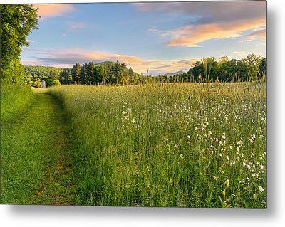 Sunny Valley Sunrise Metal Print by Bill Wakeley