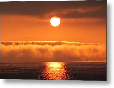 Metal Print featuring the photograph Sunrise And Fog by E Faithe Lester