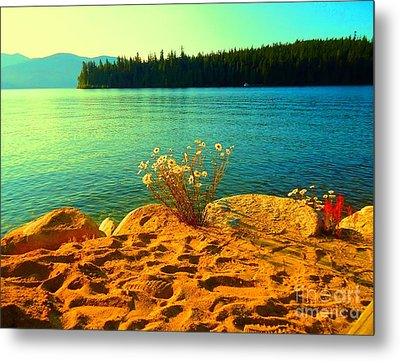 Sunrise At Daisy Lake Metal Print by Ann Johndro-Collins