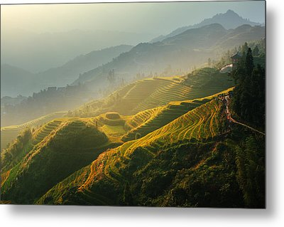 Sunrise At Terrace In Guangxi China 2 Metal Print by Afrison Ma