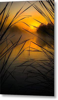 Sunrise At The Sepulveda Dam Wildlife Reserve Metal Print