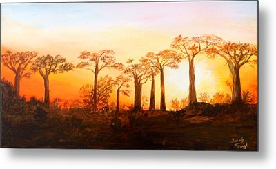 Sunrise Boab Trees Metal Print