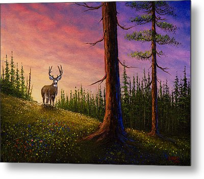 Sunrise Buck Metal Print by C Steele